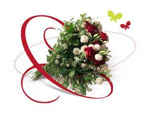 bukiet róż białych i czerwonych